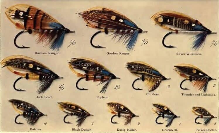 choose best fly fishing flies