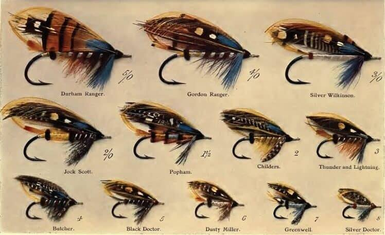 choose best fly fishing flies
